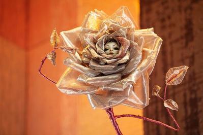 Ca la rose lcd isabelle leourier etb 1